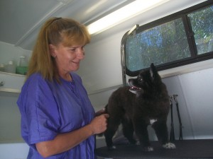 Mobile groomer with puppy dog